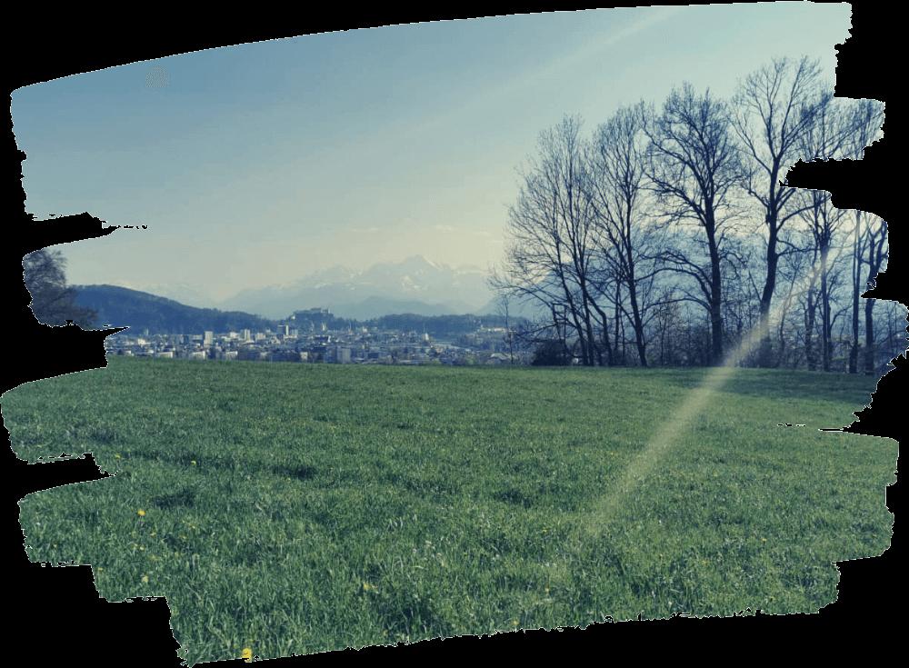 website-erstellen-salzburg